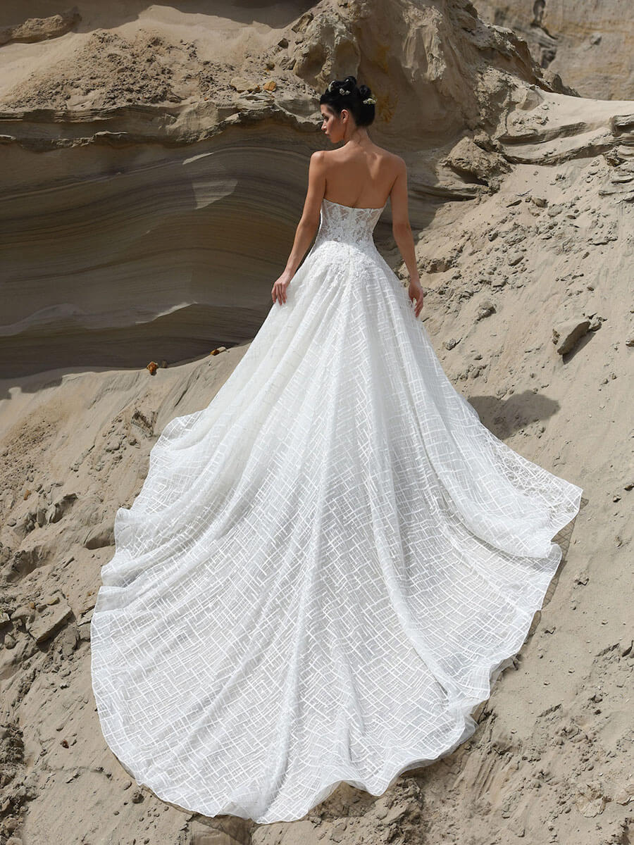 Tenderness bridal gown